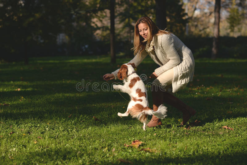 Beautiful girl in the park doing obedience excersize with her dog Cavalier King Charles Spaniel. Beautiful girl is in the park and doing obedience excersize with stock images