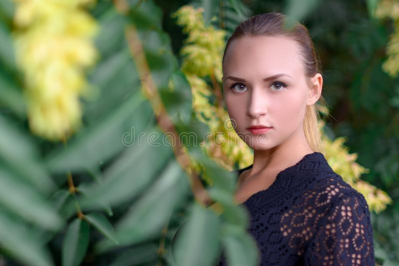 Beautiful girl in the Park stock image