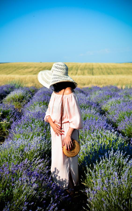 Beautiful girl in a pink dress and black hat in a lavender field, does not look at the camera. Clear sunny day. Summer. The royalty free stock photos