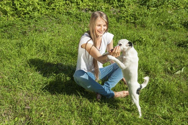 Beautiful girl playing with dog stock photo