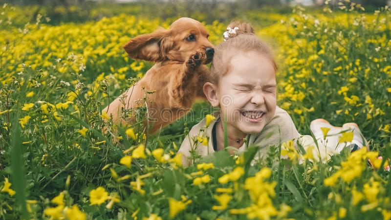 Beautiful girl playing on green grass with a puppy royalty free stock photography