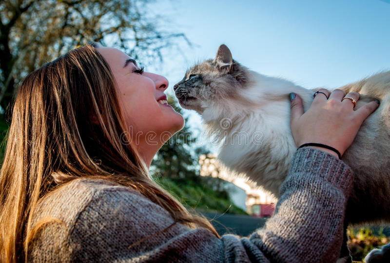 Beautiful girl playing with a rescued stray cat. A beautiful girl plays with a stray cat on a sunny day stock photography