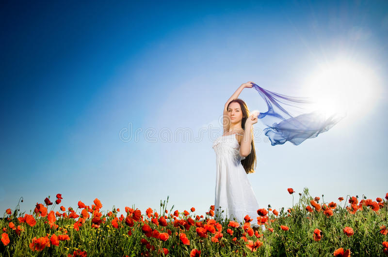 Beautiful girl in the poppy field royalty free stock images