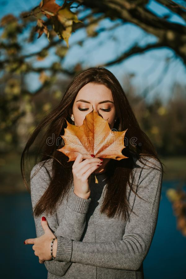 Beautiful girl posing in autumn with a sheet of plane tree stock photos