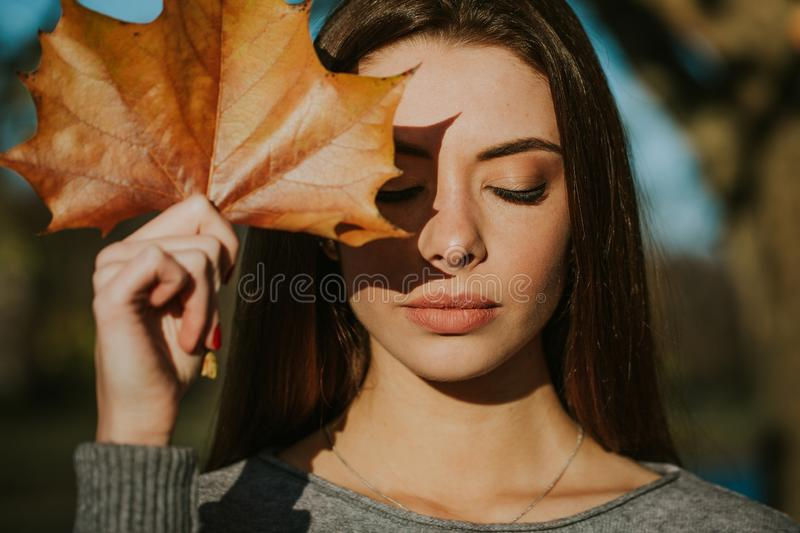 Beautiful girl posing in autumn with a sheet of plane tree royalty free stock photos