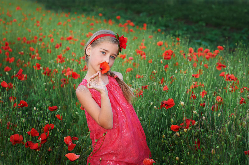 Beautiful girl in red dress walks at poppy field royalty free stock images