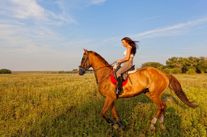 Beautiful girl riding a horse royalty free stock images