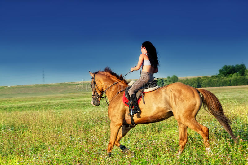 Beautiful girl riding a horse royalty free stock image
