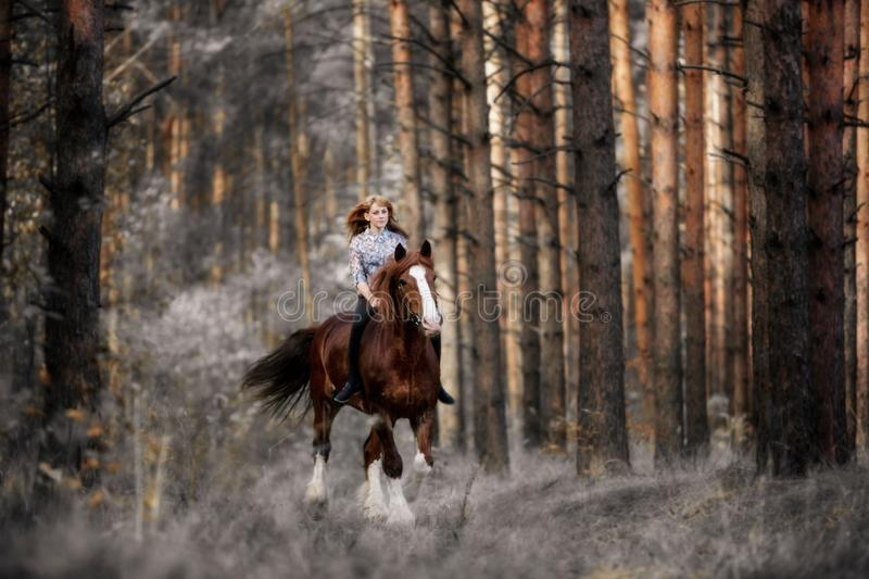 Beautiful girl riding a horse gallops in the mysterious forest in the early morning stock photo