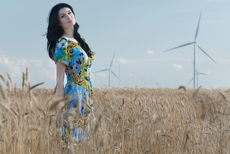 Beautiful girl in the Rye royalty free stock photos