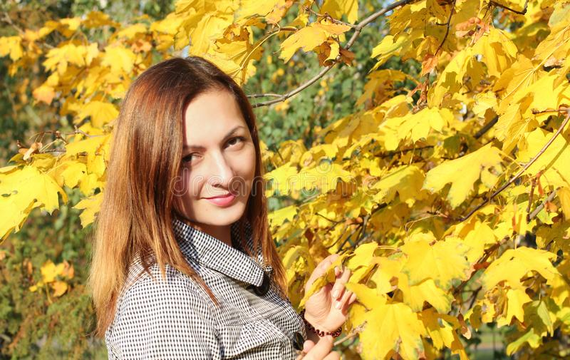 Beautiful girl sitting on the ground near the yellow leaves, girl autumn in nature on a Sunny day. brown hair color in stock photos