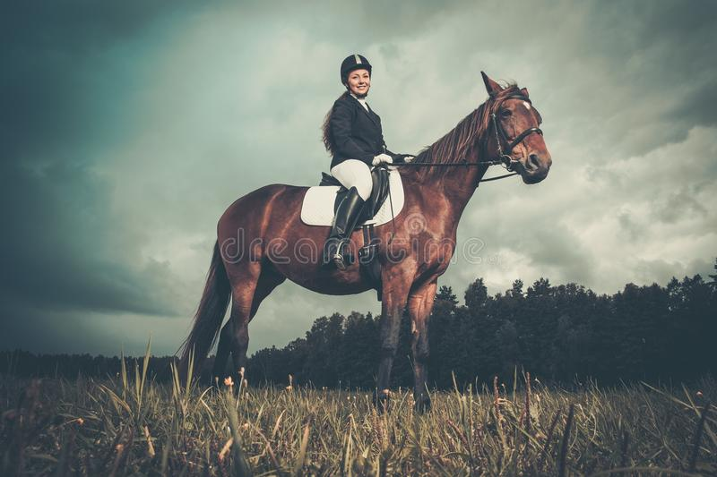 Beautiful girl sitting on a horse. Outdoors against moody sky stock photography