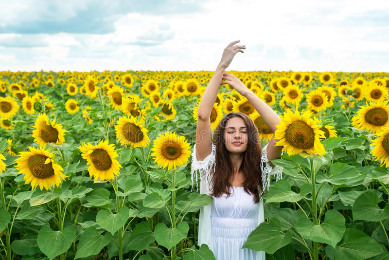 Beautiful girl standing with arms raised in sunflower field royalty free stock photos