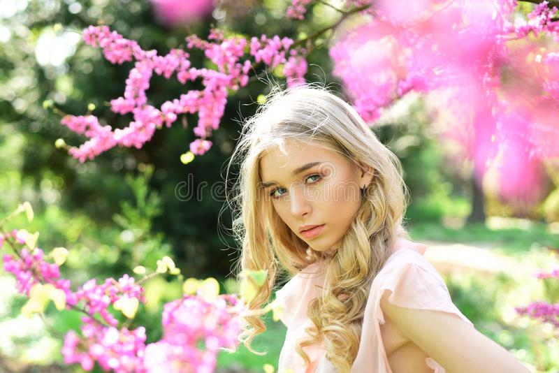 Beautiful girl standing under gentle tree with tiny hot pink blossom. Elegant young lady with long, blond, curled hair stock photos