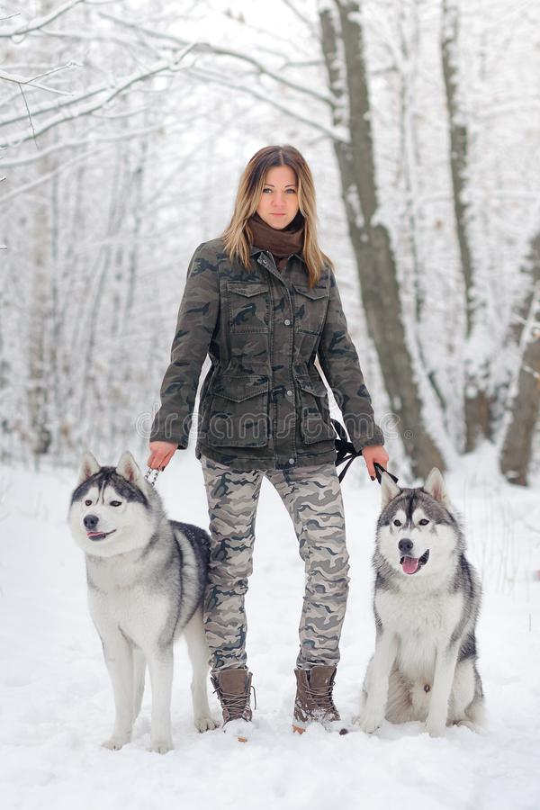 The beautiful girl with two dogs huskies poses in beautiful for the snow wood. Trees in snow stock photography