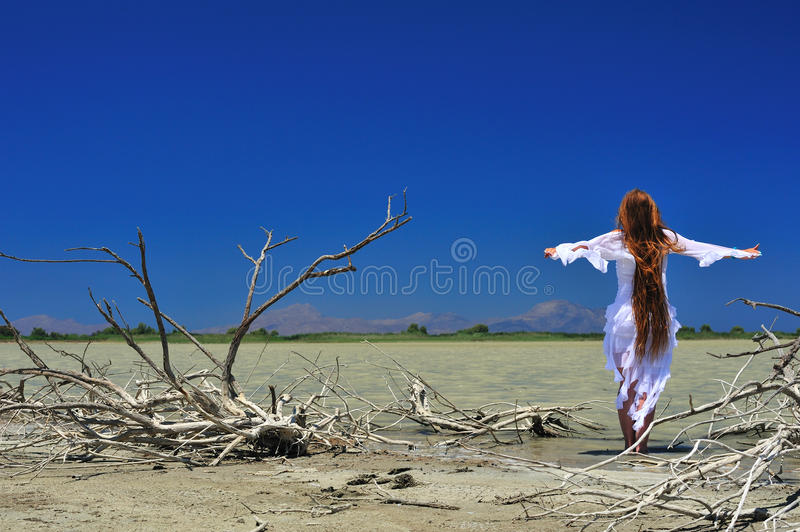 Download Beautiful Girl With Waving Hair Stock Image - Image: 15617613