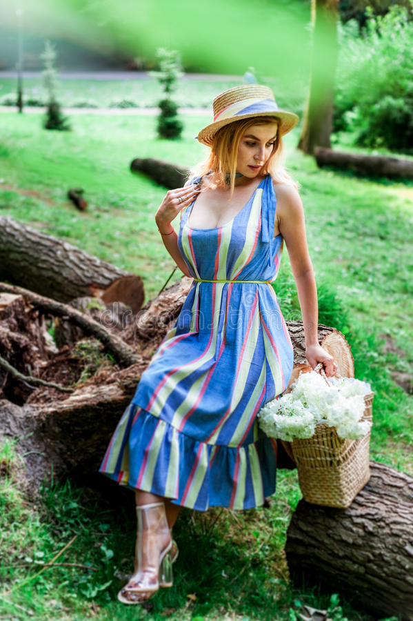 Beautiful girl wearing blue dress and hat collect flowers in basket in the wood. Beautiful girl wearing blue dress collect flowers in basket in the green grass stock photo