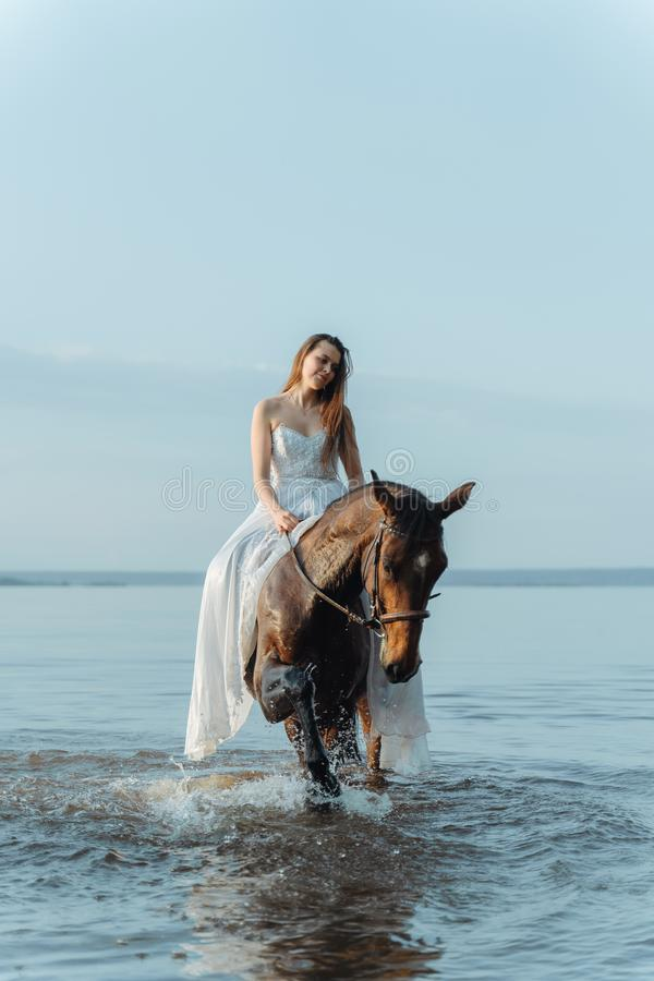 Beautiful girl in a white long dress riding a horse. Bride in the lake on horseback. Beautiful girl in a white long dress riding a horse. Bride in the lake on stock images