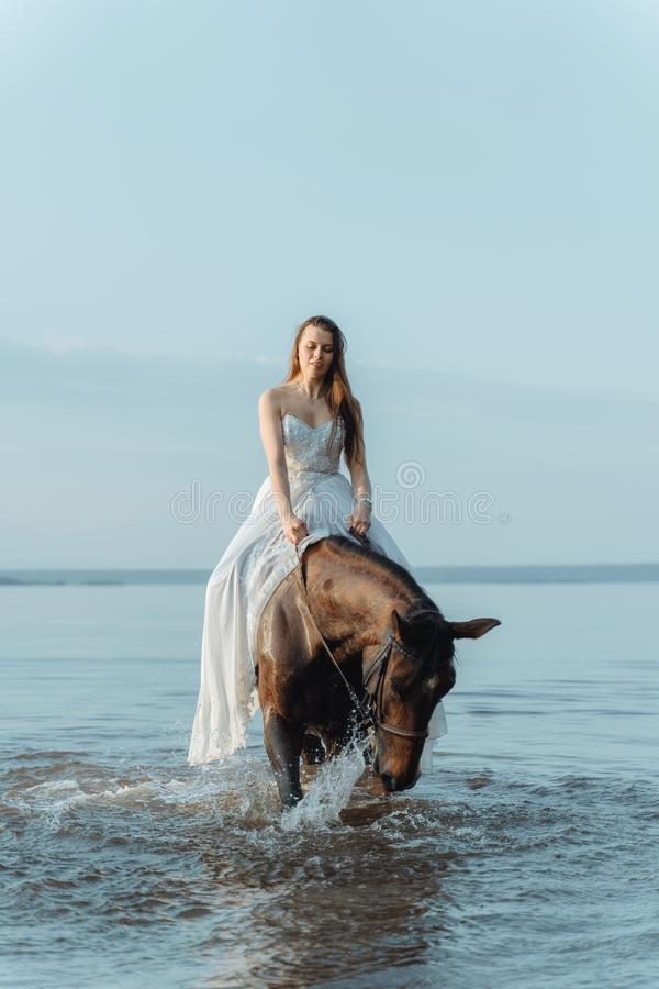 Beautiful girl in a white long dress riding a horse. Bride in the lake on horseback. Beautiful girl in a white long dress riding a horse. Bride in the lake on royalty free stock image
