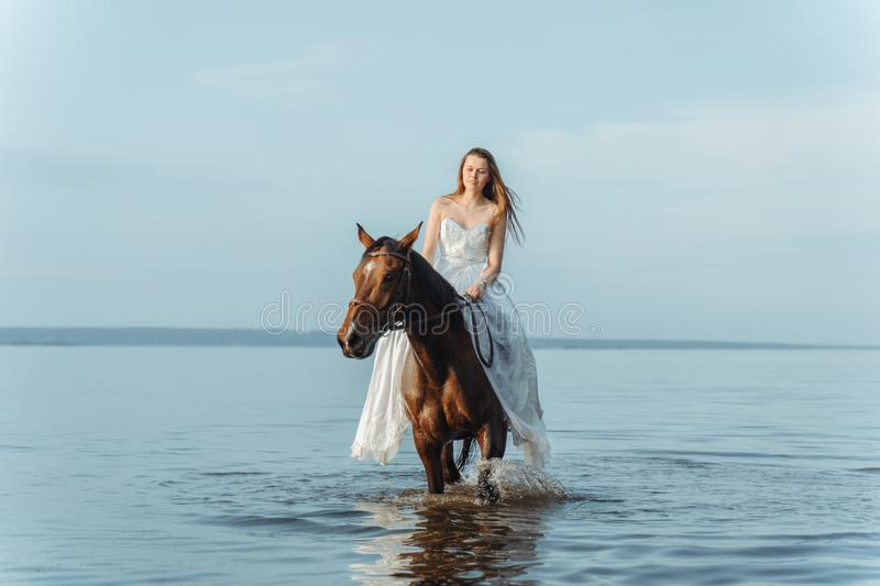 Beautiful girl in a white long dress riding a horse. Bride in the lake on horseback. Beautiful girl in a white long dress riding a horse. Bride in the lake on royalty free stock photos
