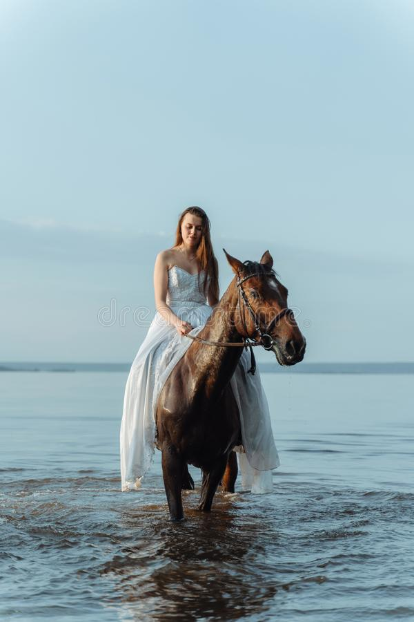 Beautiful girl in a white long dress riding a horse. Bride in the lake on horseback. Beautiful girl in a white long dress riding a horse. Bride in the lake on stock photos