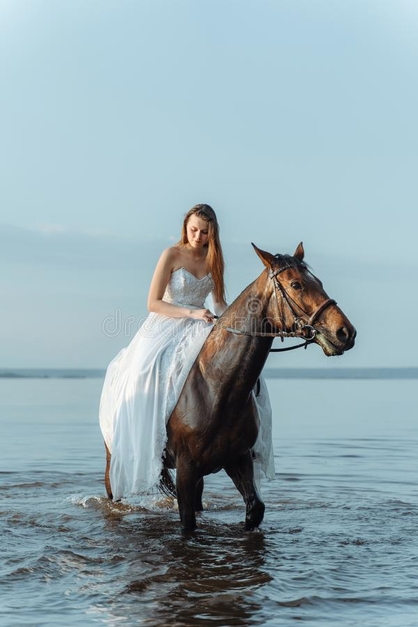 Beautiful girl in a white long dress riding a horse. Bride in the lake on horseback. Beautiful girl in a white long dress riding a horse. Bride in the lake on stock photo