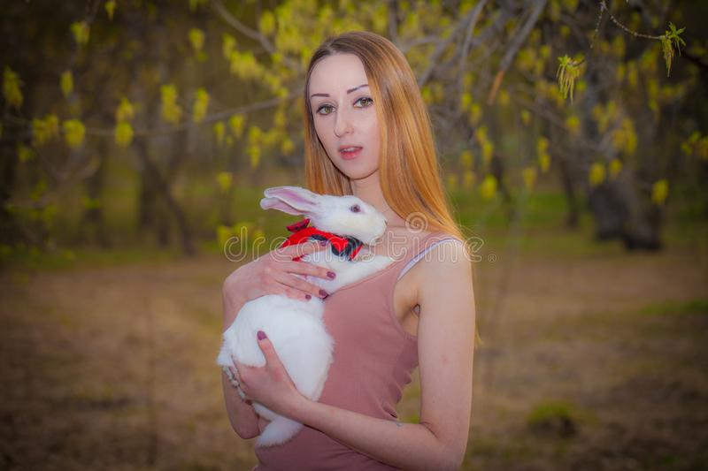 Beautiful girl with a white rabbit. A woman is holding a hare stock photo