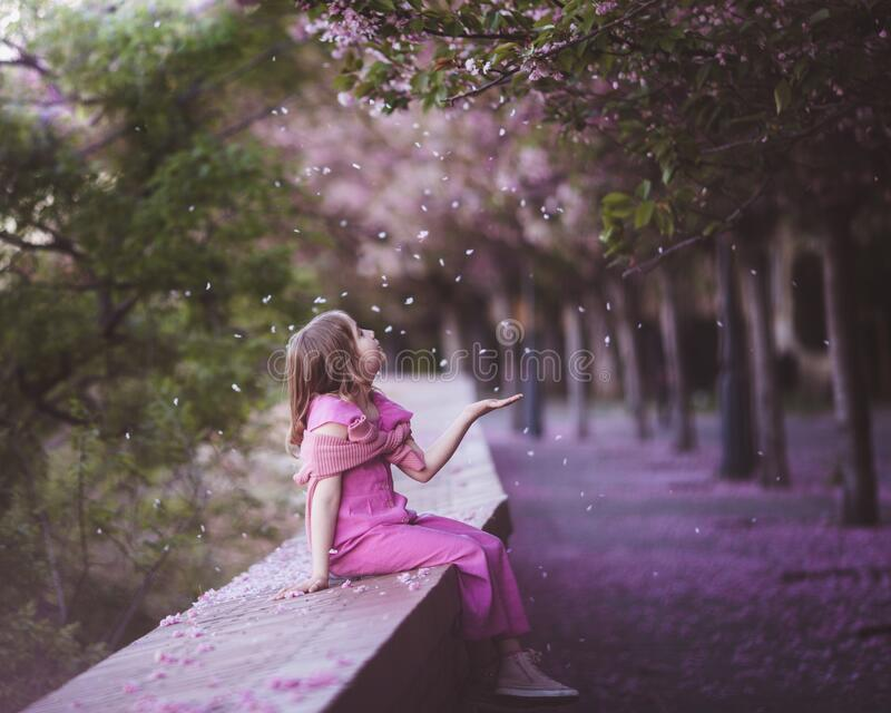 Beautiful girl 10 y.o. in pink dress sit in cherry blossom park on a spring day, flower petals falling from the tree. In Budapest, Hungary royalty free stock photography