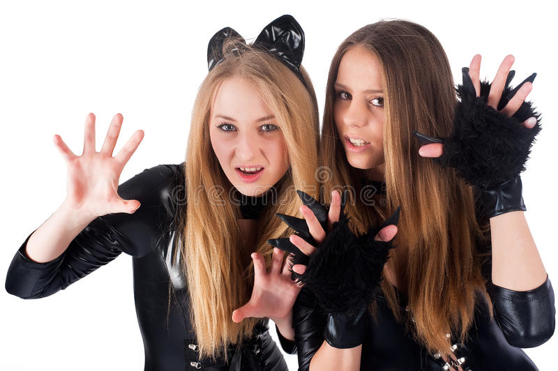 Beautiful girls in cat costume. Two aggressive beautiful model in cat costume. Isolated on white royalty free stock images