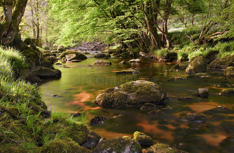 Beautiful glencree river flowing through magical landscape stock photos