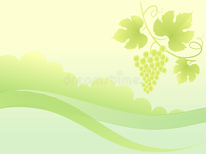 Download Beautiful Golden Grape Vine Background. Stock Vector - Image: 20073074
