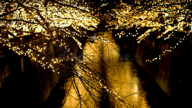 Beautiful golden illumination Christmas light in Tokyo, Japan. L royalty free stock image