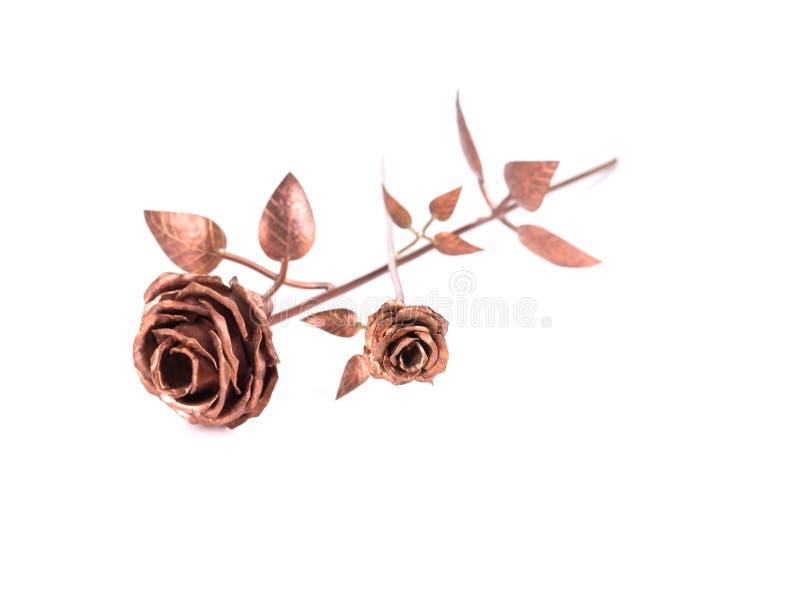 Beautiful Golden Rose. Stock Photo