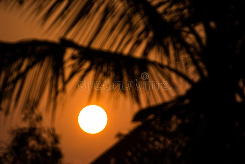 A beautiful golden sunset/sun rise stock image