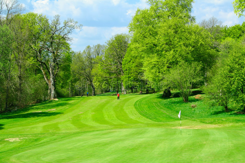 Beautiful golf course in fresh green colors stock photography