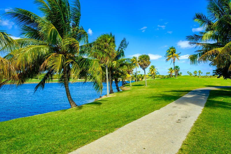 Beautiful golf course. Landscape in Miami royalty free stock photography