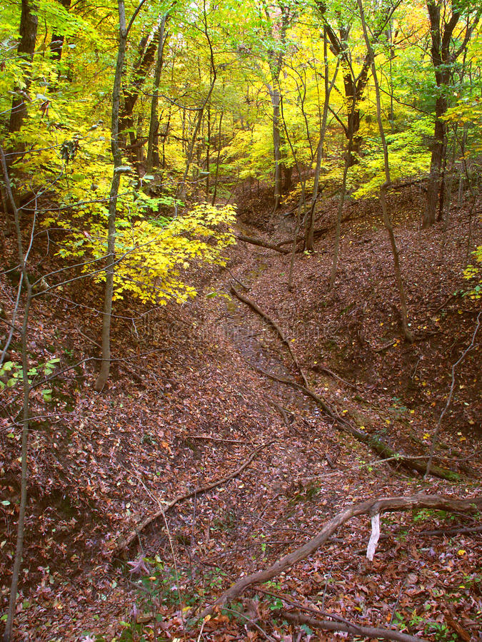 Download Beautiful Gorge - Illinois stock photo. Image of environmental - 21425158