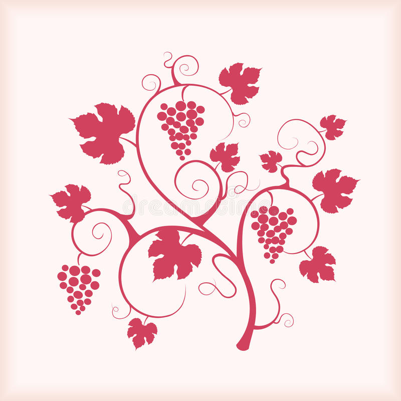 Free Beautiful Grape Vine With Frame Background. Stock Photo - 20073120