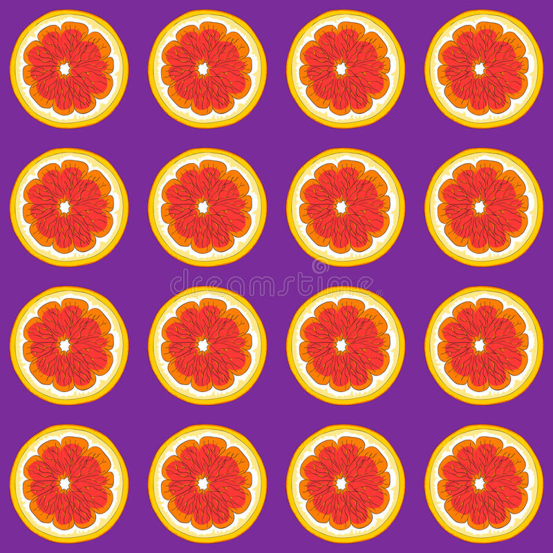 Beautiful grapefruits on a purple background. royalty free illustration