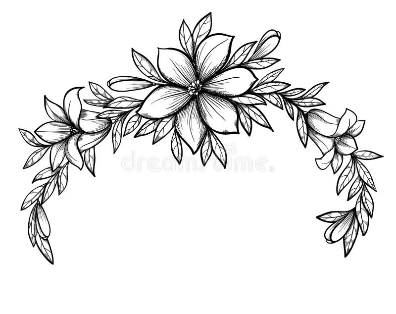 Wedding Flower Line Drawing : Beautiful graphic drawing lily branch with leaves stock
