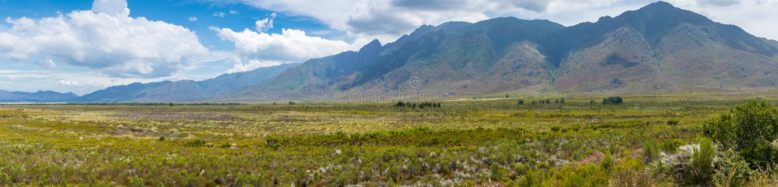 Beautiful grassland savannah landscape with mountains on the background. Beautiful grassland savannah long panorama landscape with green grass and mountains on royalty free stock image