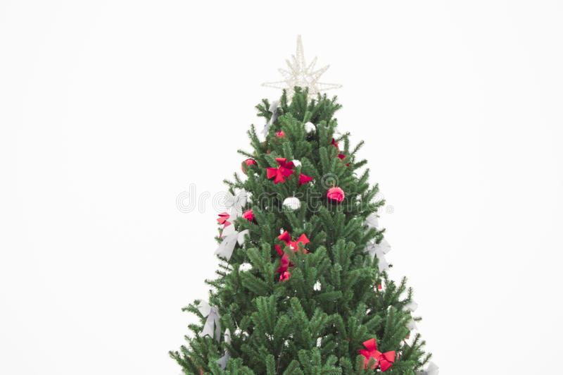 Beautiful green artificial Christmas tree decorated with shiny ribbons and balls isolated on white background royalty free stock photo