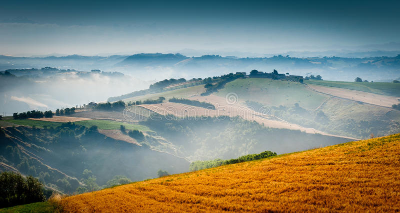 Beautiful green countryside in the morning light stock image