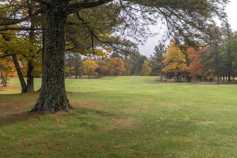 Beautiful green grassy landscape with colorful Autumn trees. Wonderful travel destination are the golf courses and resorts in the Upper Peninsula of Michigan stock image