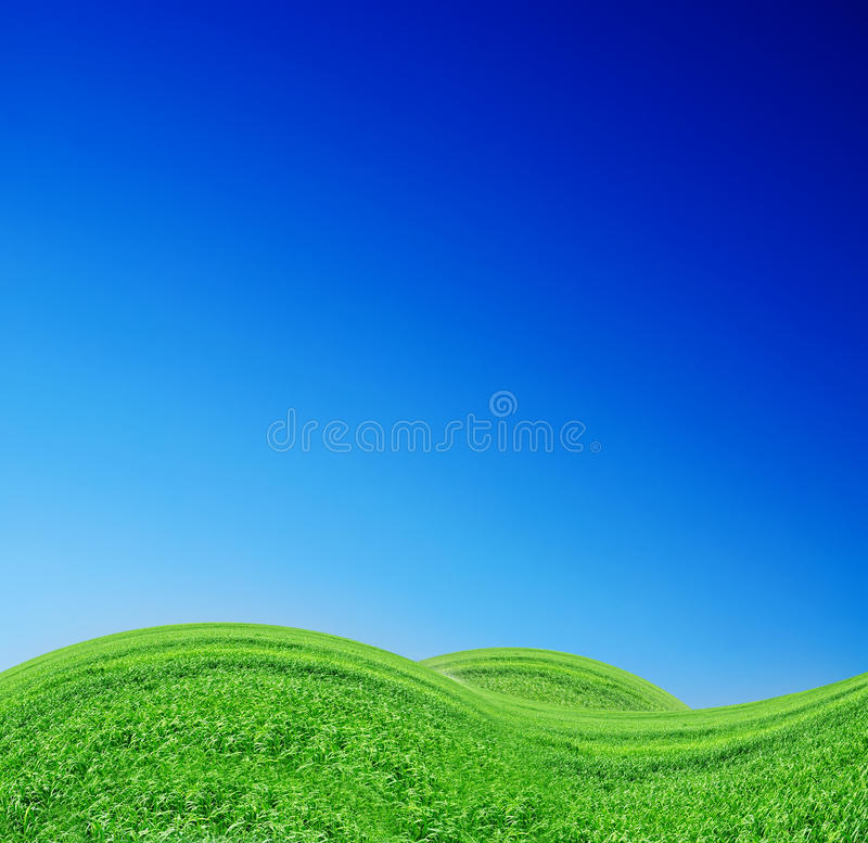 Beautiful Green Hills. On a sky-blue background vector illustration