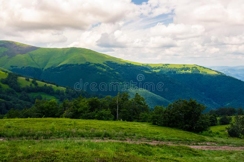 Beautiful green hills of Borzhava mountain ridge stock photography