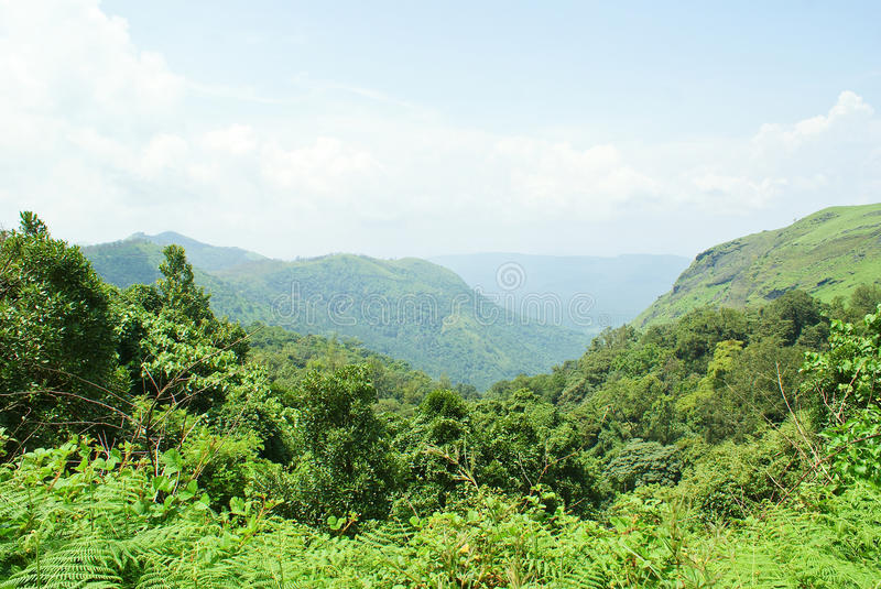 Beautiful green landscape from hilltop stock images
