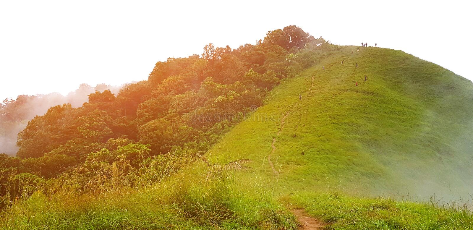 Beautiful of green mountain landscape view with orange sunlight flare, mist and cloud in deep forest royalty free stock photo