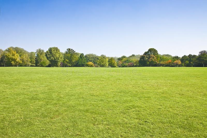 Beautiful green mowed lawn with trees and sky on background - image with copy space royalty free stock photo
