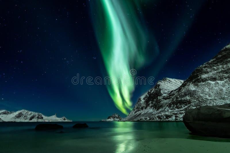 Northern Lights at Haukland Beach on the Lofoten Islands stock photography